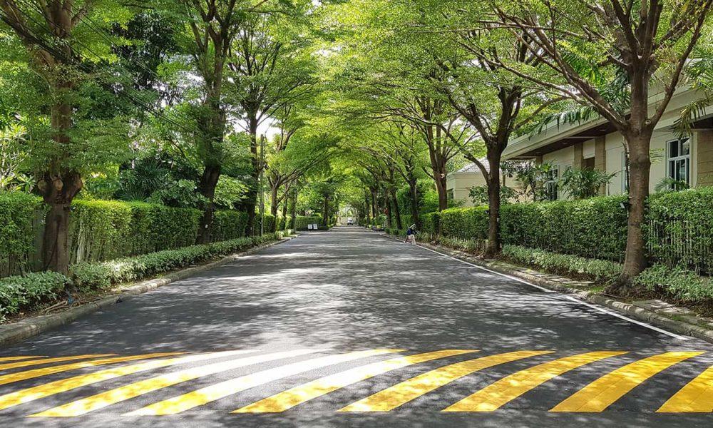 ถนนภายใน หมู่บ้านจัดสรร